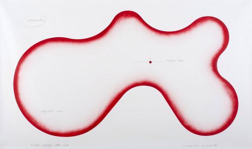Progetto Pozza Rossa, 1988- 2013