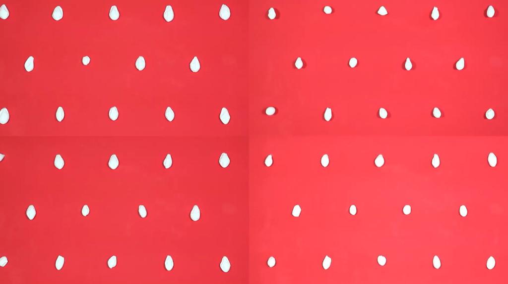 Cover - Polka_2-1024x574