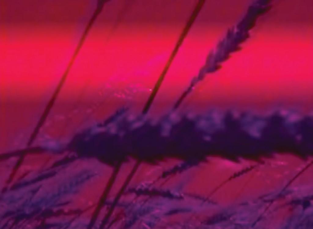 5_Bianco-Valente, Uneuclidean Pattern, 2003