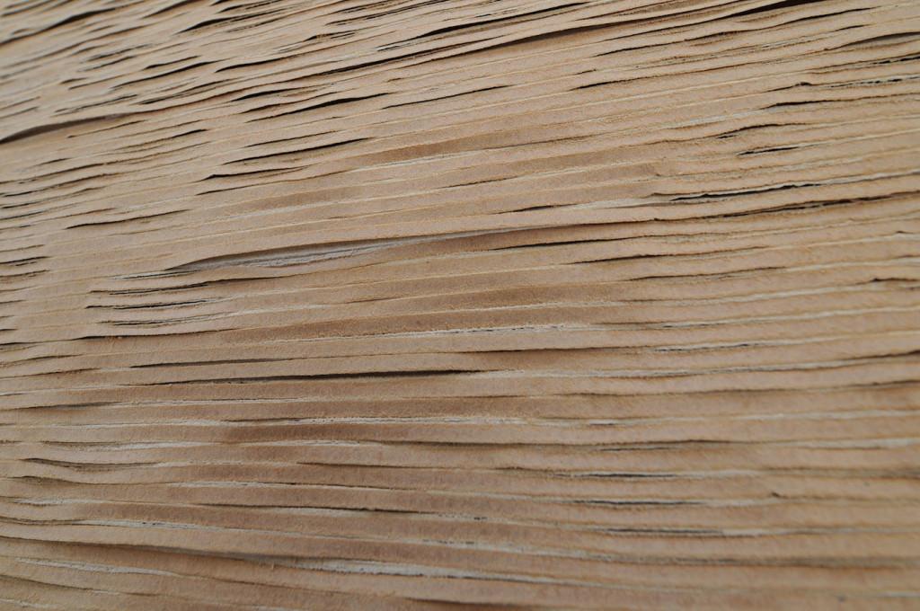 Disordine-essenziale,-2015,-abrasione-su-cartone-ondulato-(part.)