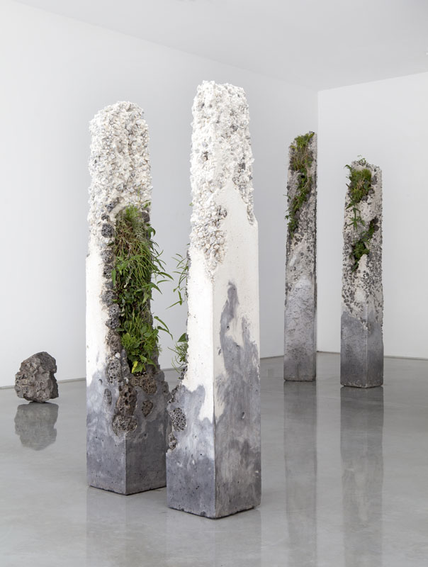 Jamie North, 'Terraforms', 2014 (installation view), cement, marble waste, limestone, steel slag, coal ash, plastic fibre, tree fern slab, various Australian native plant species, dimensions variable. Courtesy the artist and S
