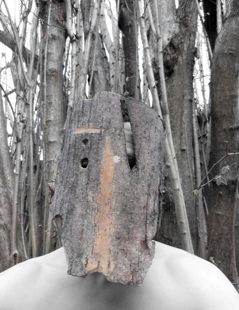 Daniele Girardi - The Great Valley project - 2013 - Foto documentazione - Courtesy dell'artista