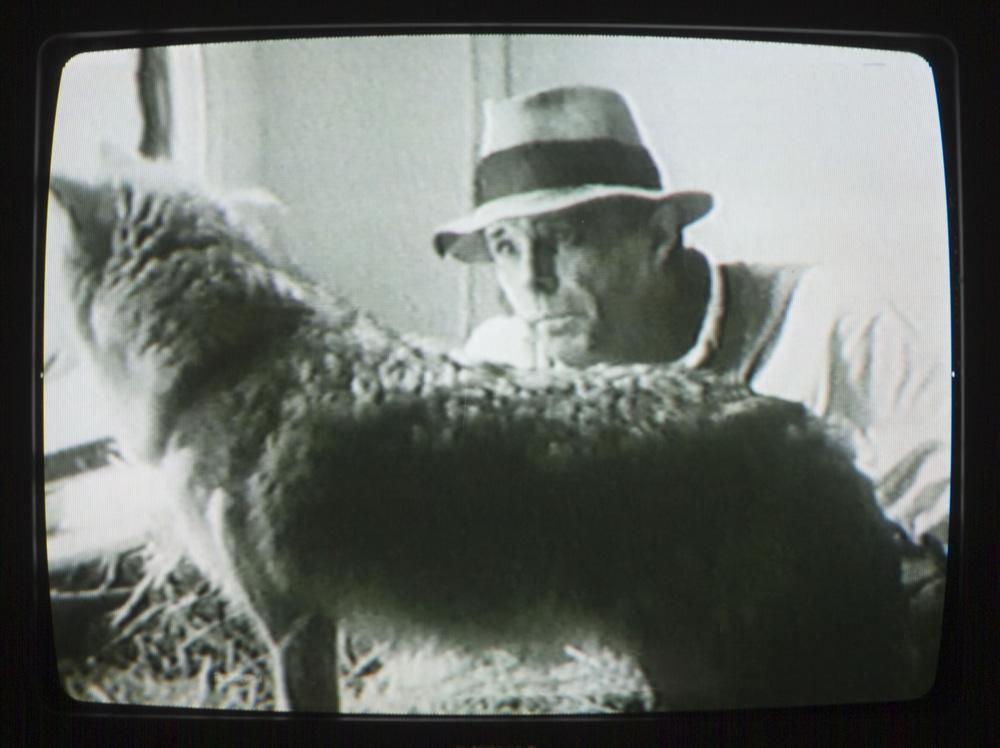 Joseph-Beuys2