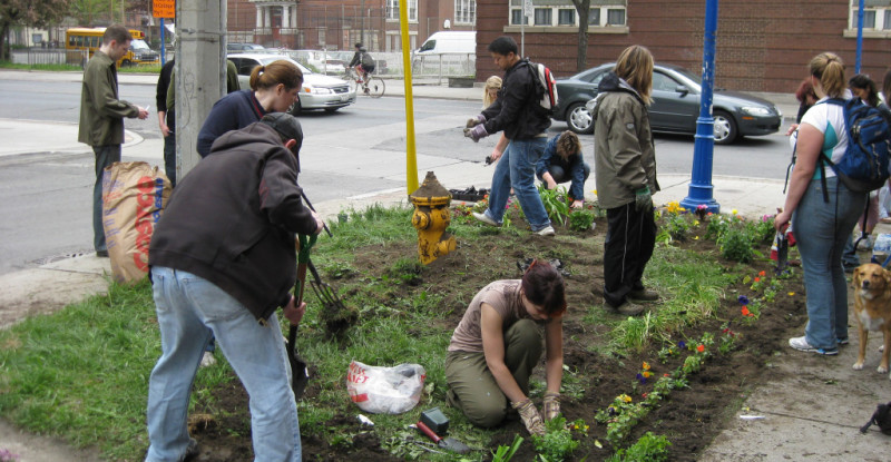 guerrillagardening-800x415